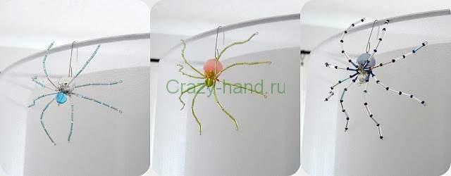 spider1_thumb