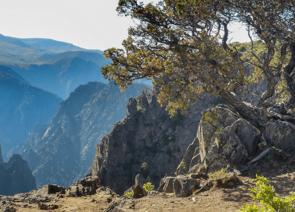 Unforgettable Hiking Trails in Black Canyon of the Gunnison