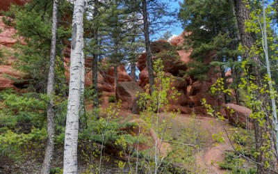 Red Rock Trail a Mini Garden of the Gods!