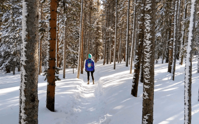 Winter Wonderland in the Rockies, Bakers Tank Trail