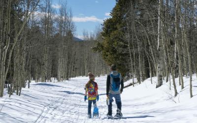 Ski & Snowshoe Beaver Creek Trail