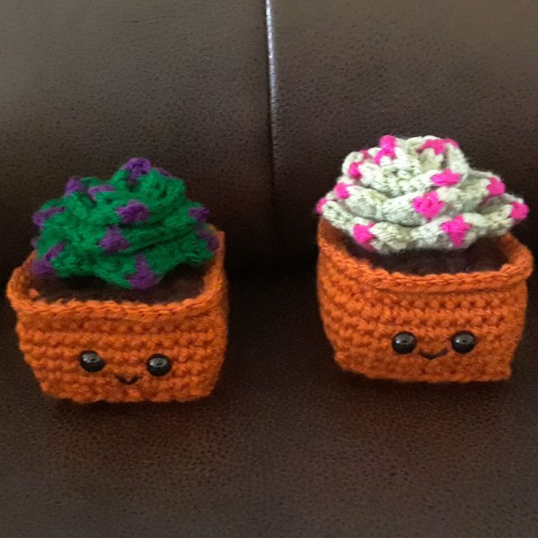 front view of crochet hen and chicks succulents