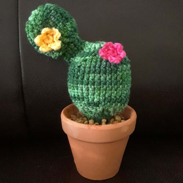 crochet cactus with flowers