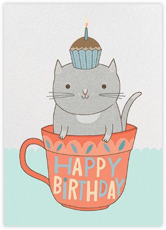 160944 Happy Birthday Cat Crazy Cat Lady Corner