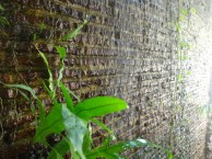pinto-art-museum-water-wall
