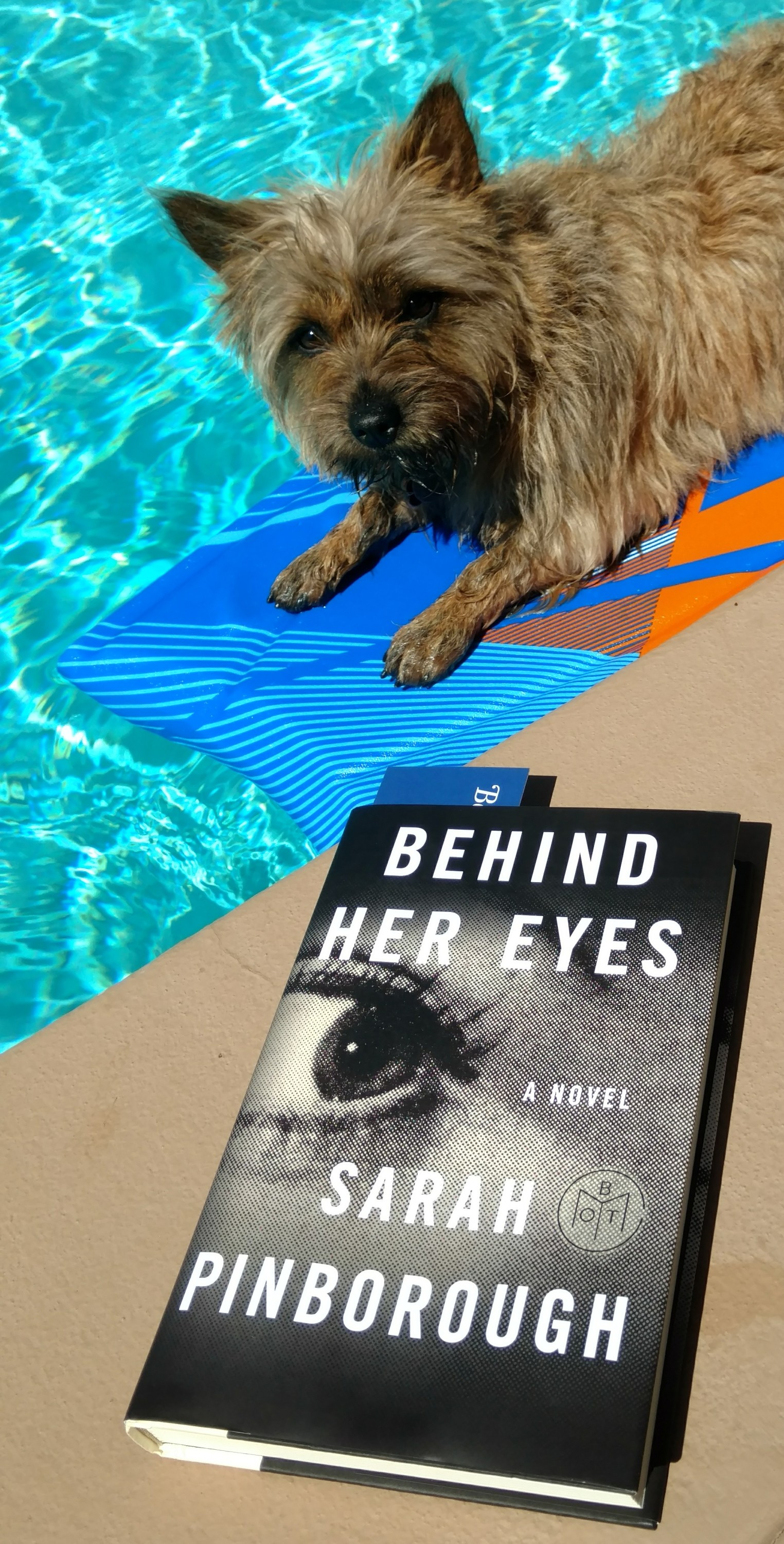 CrazyDogMama s Book Reviews  January   April 2017   CrazyDogMama Behind Her Eyes Book Review