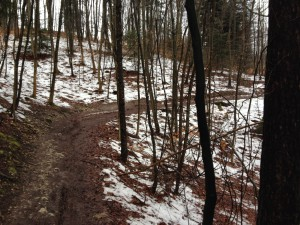 Schneereste am Trailrand