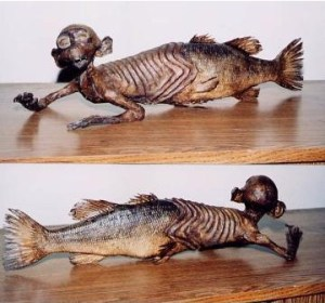 Fiji mermaid