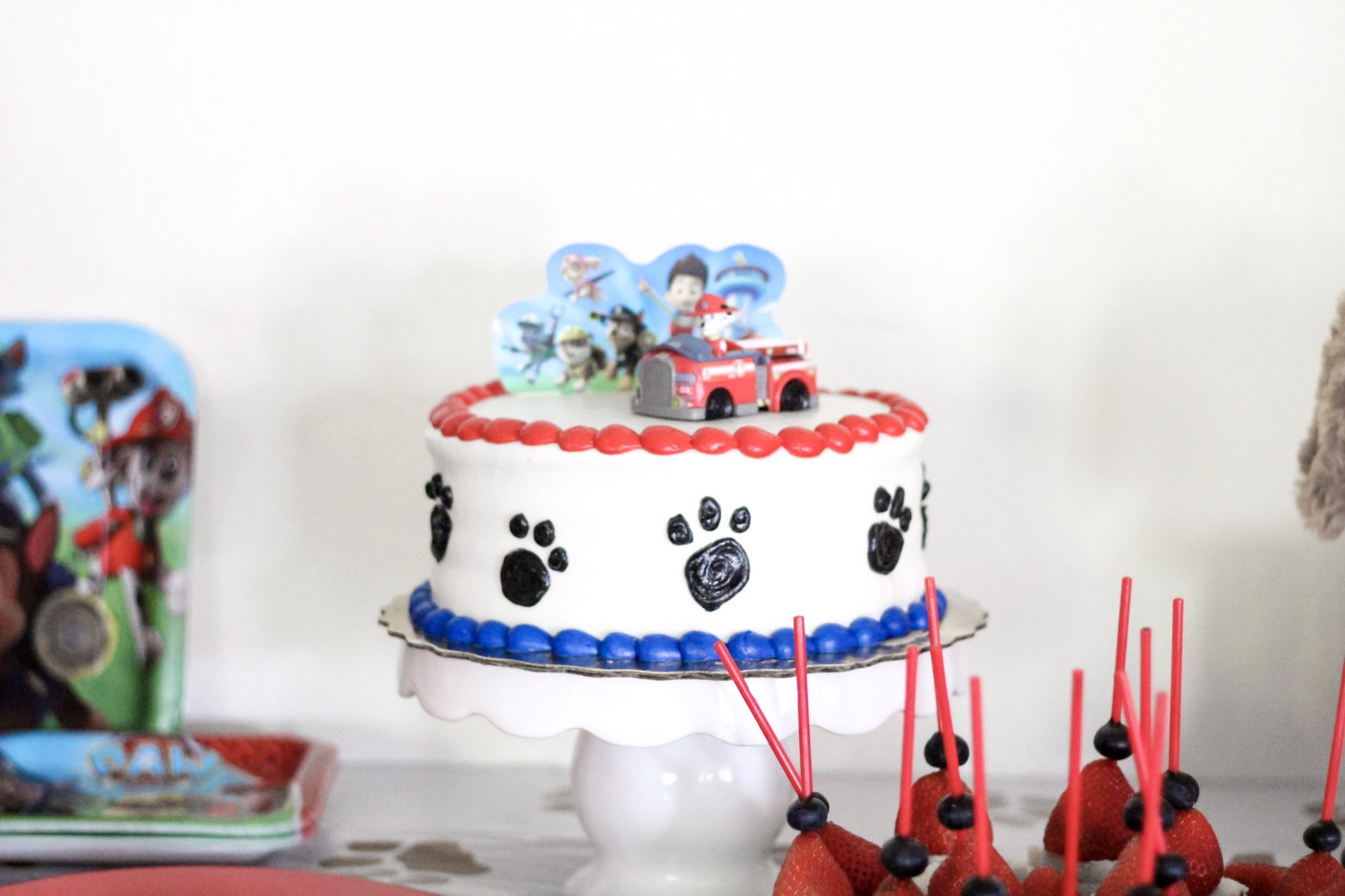 PAW PATROL BIRTHDAY PARTY Crazy Life with Littles