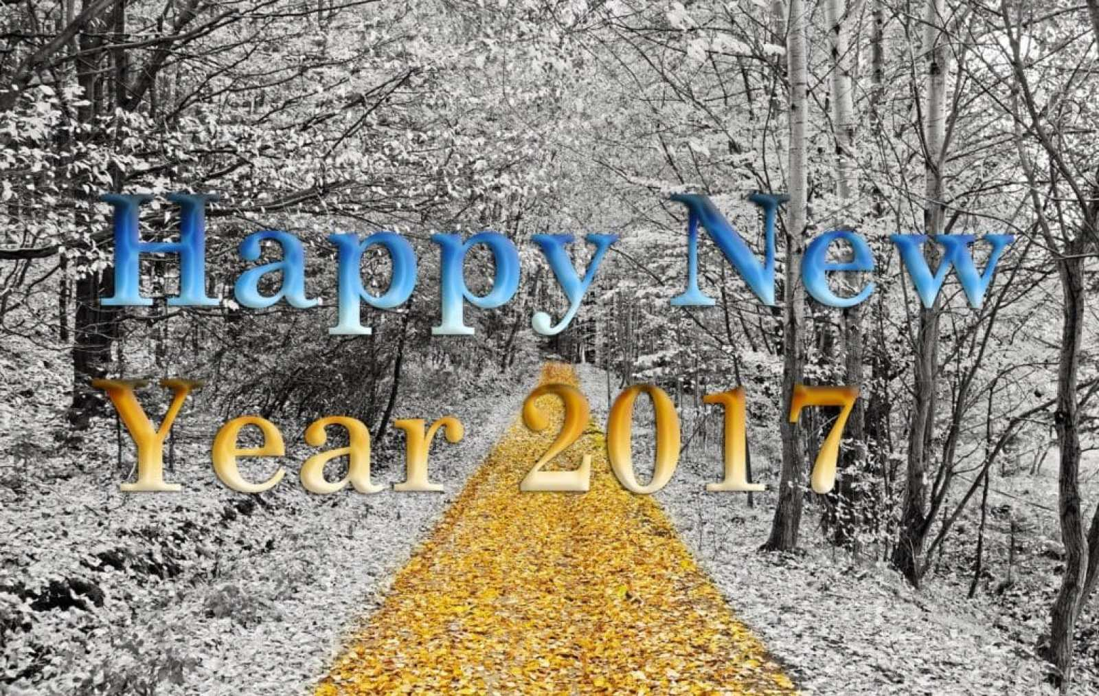Happy-New-Year-2017-with-forest-and-snowfall.