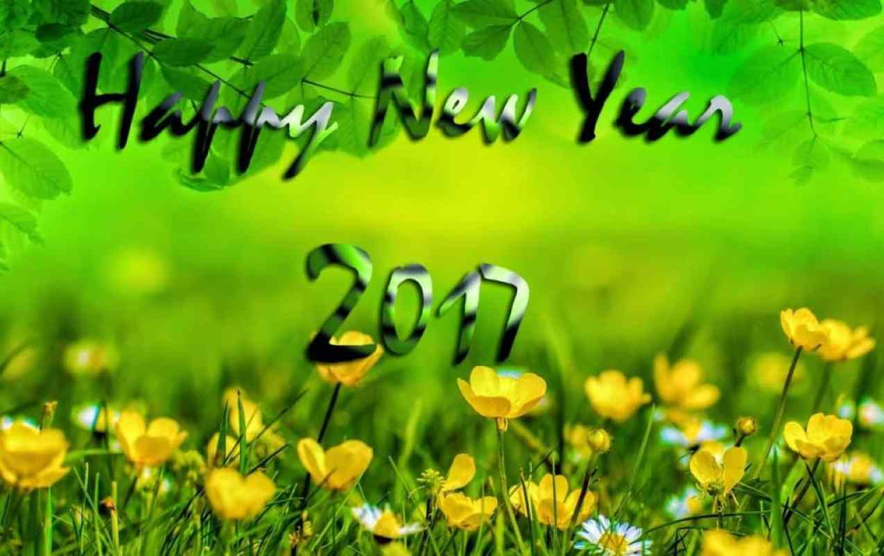 Happy New Year 2017 with greenery