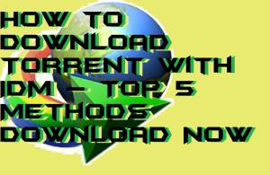 How to Download Torrent with IDM – Top 5 Methods Download Now