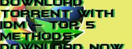 How to Download Torrent with IDM – Top 5 Methods Download Now