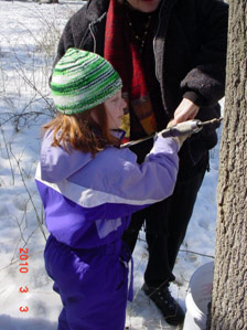 tree_tapping2