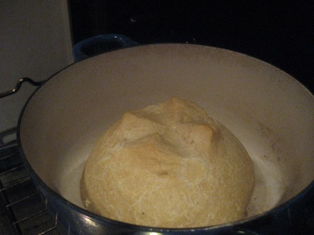 no knead bread