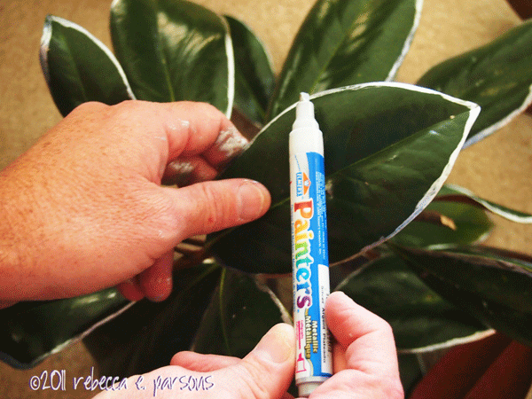 Using Magnolia Leaves Decorating Christmas   Ideas Christmas Decorating Using Magnolia Leaves Decorating Christmas  Leaf Bunching  PC131000