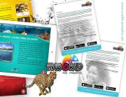 Branding & Print Collateral Design by Cre8tive Media