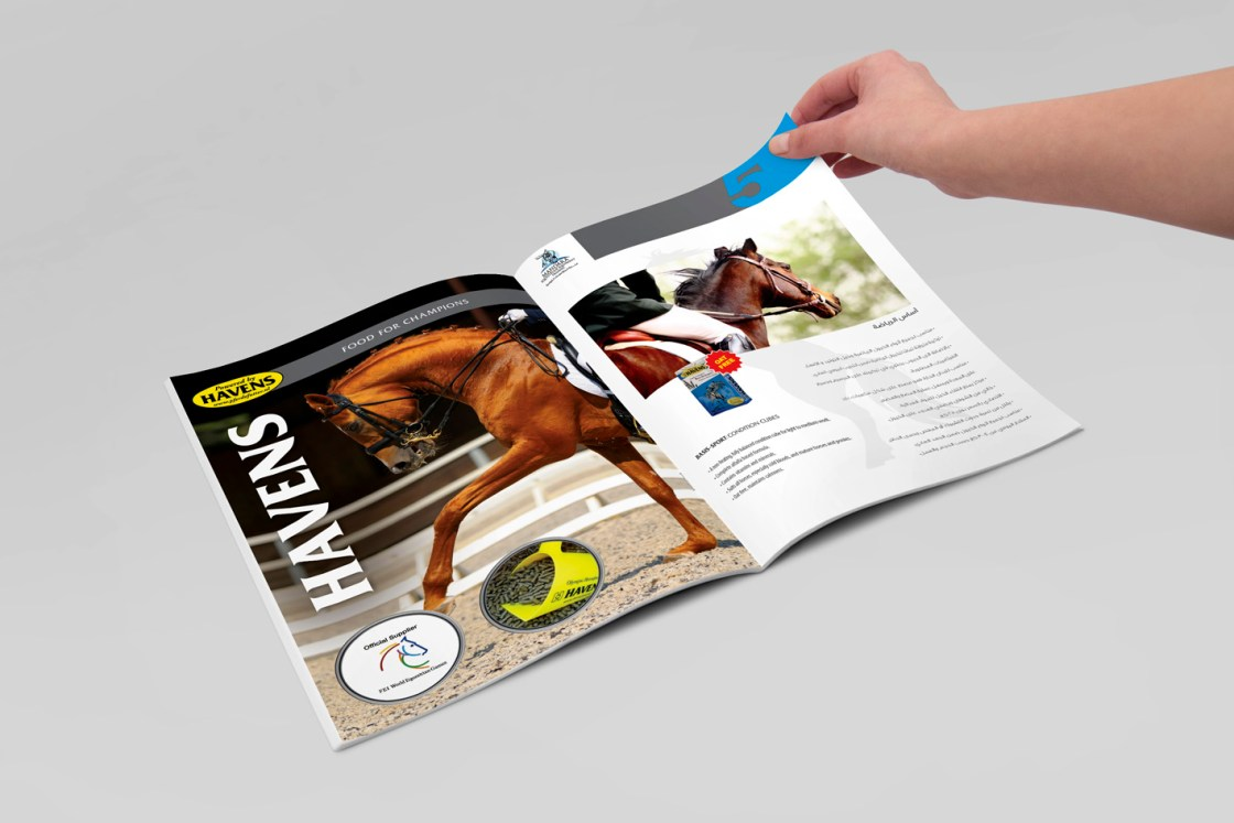 Havens Brochure UAE