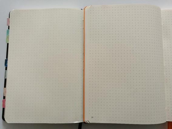 Page carnet Goalbook