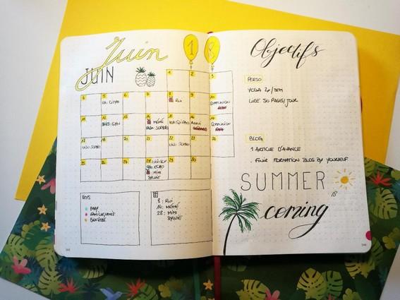 Idée - monthly log