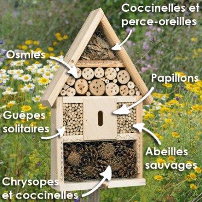 Source : plantes-et-jardins.com