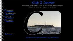 2ème version du site Cap 2 Immo, agence à NAglet
