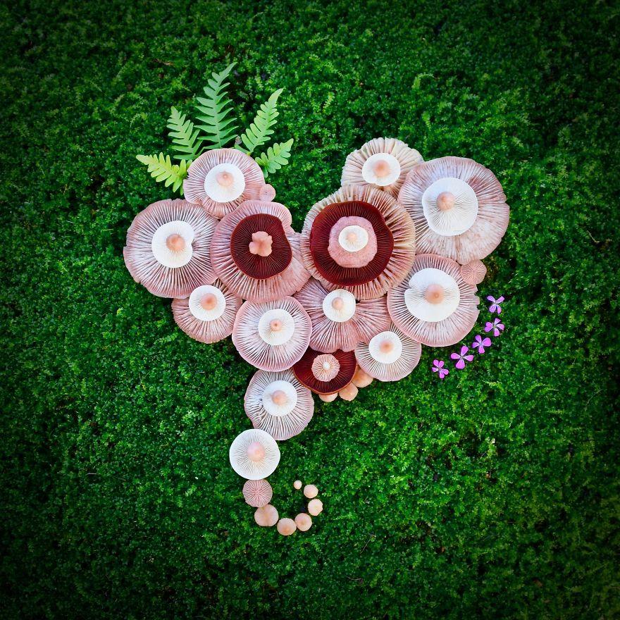 Saara Alhopuro imagine des compositions artistiques avec des champignons