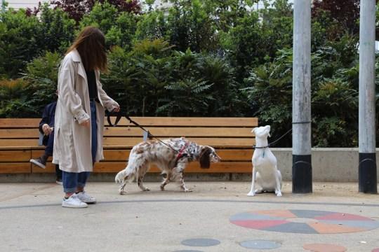 À Barcelone, des statues sensibilisent à l'adoption des chiens abandonnés