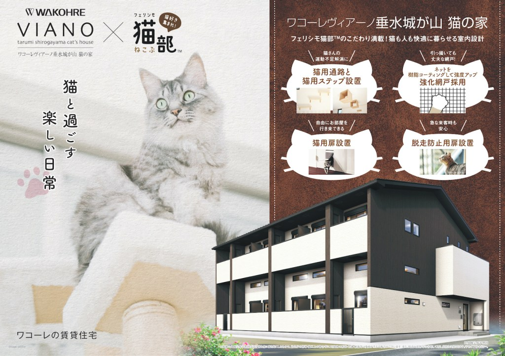 Des appartements conçus pour la vie de célibataire avec un chat