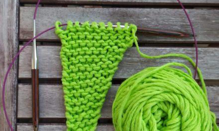 Taller Xal amb Veggie Wool