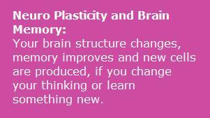 Neuro-Plasticity
