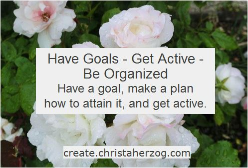 Have goals and be organized