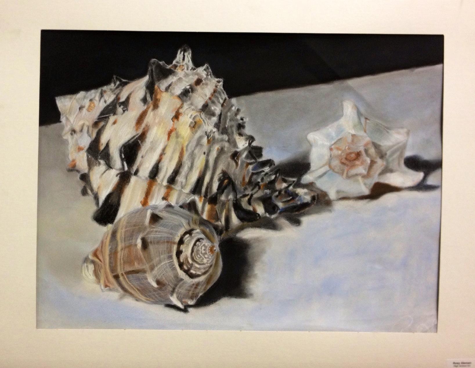 Sea Shell Pastel Drawing