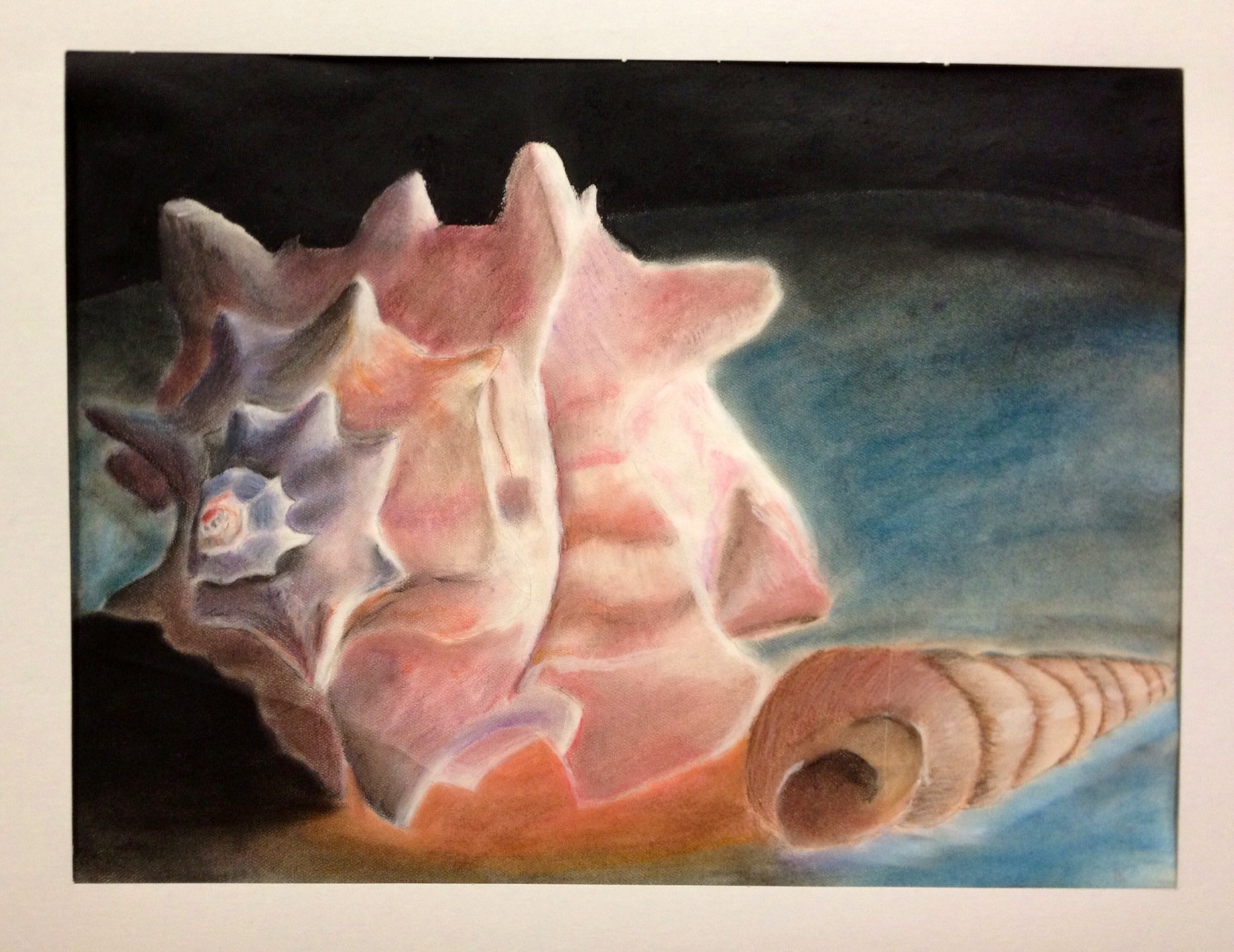 Sea Shell Pastel Drawing Lesson Drawing Observation Skills