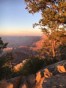 Grand Canyon Photo © Michelle C East