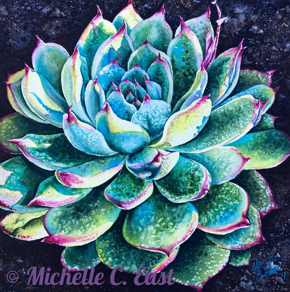 Succulent in the Morning Light  Original Watercolor Painting by Michelle C East 2017