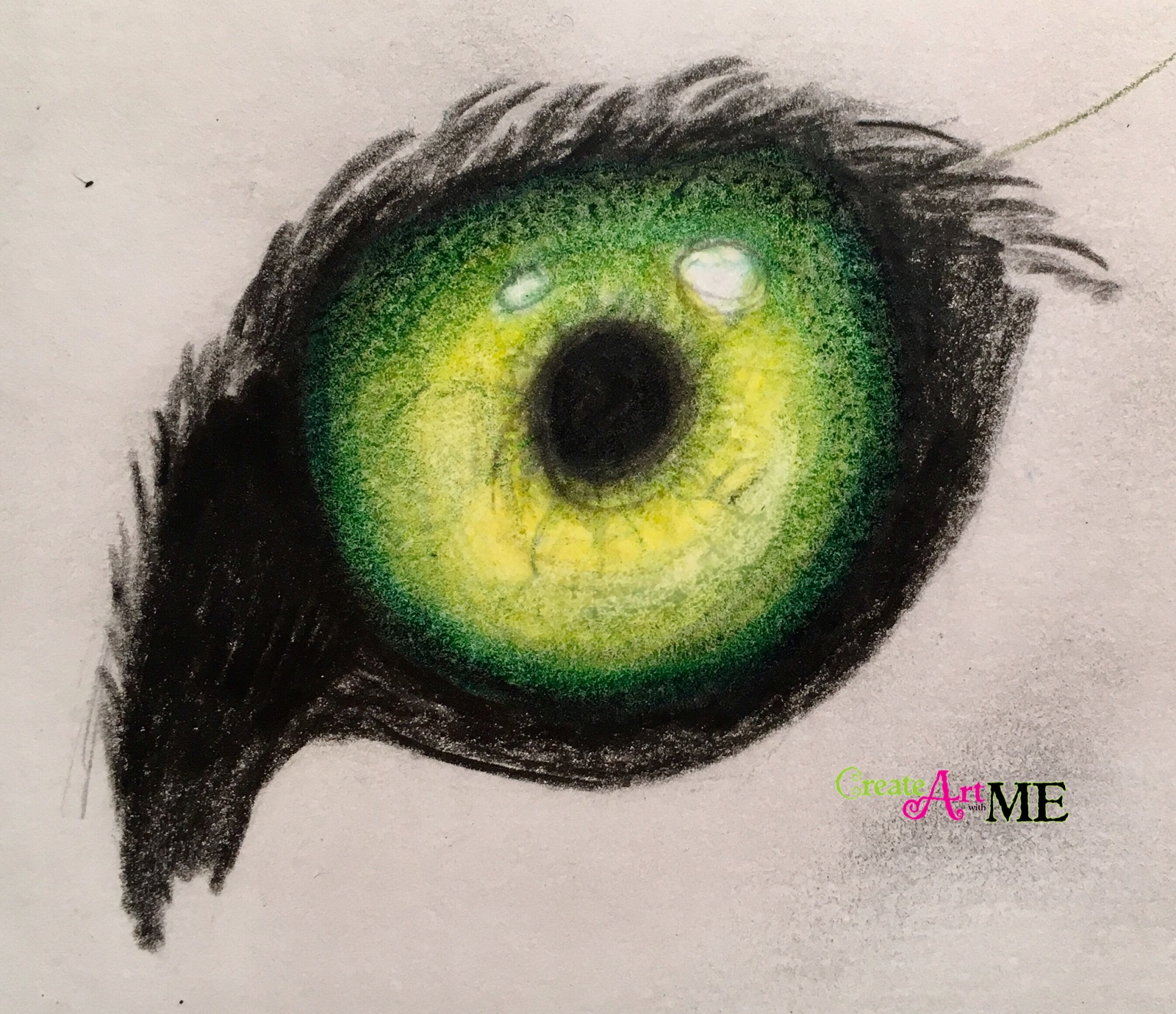 Emphasis Animal Eyes Spot Color Drawing