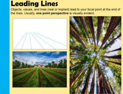 Leading Lines Landscape Composition