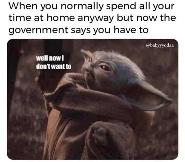 government says
