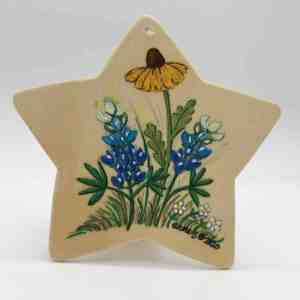 Image: star-shaped wood plaque with bluebonnets and yellow flower.