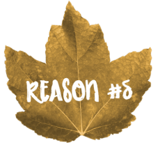 Give Thanks For Teachers Reason 5