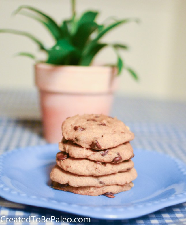 Chocolate Chip Cookies (from plantains)