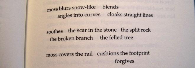 Poem - Shorud