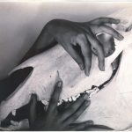 Stieglitz - 'Georgia O'Keeffe Hands and Horse Skull'