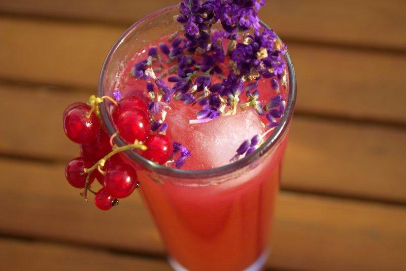 Lavendel-Johannisbeer-Limonade