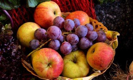 Fruchtfliegen Entfernen – Aber Vegan