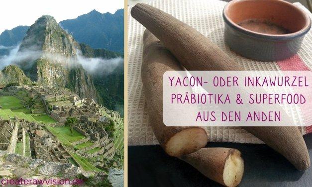 Yacon-oder Inkawurzel-Superfood und Präbiotika aus den Anden