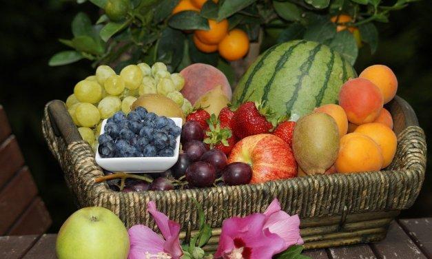 Früchte richtig lagern