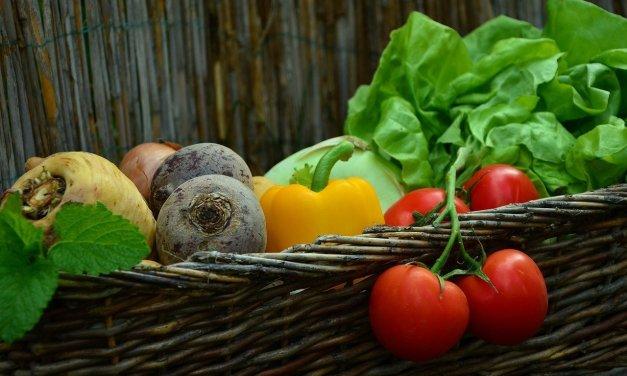 Richtige Lagerung von Gemüse, Salate und Kräutern