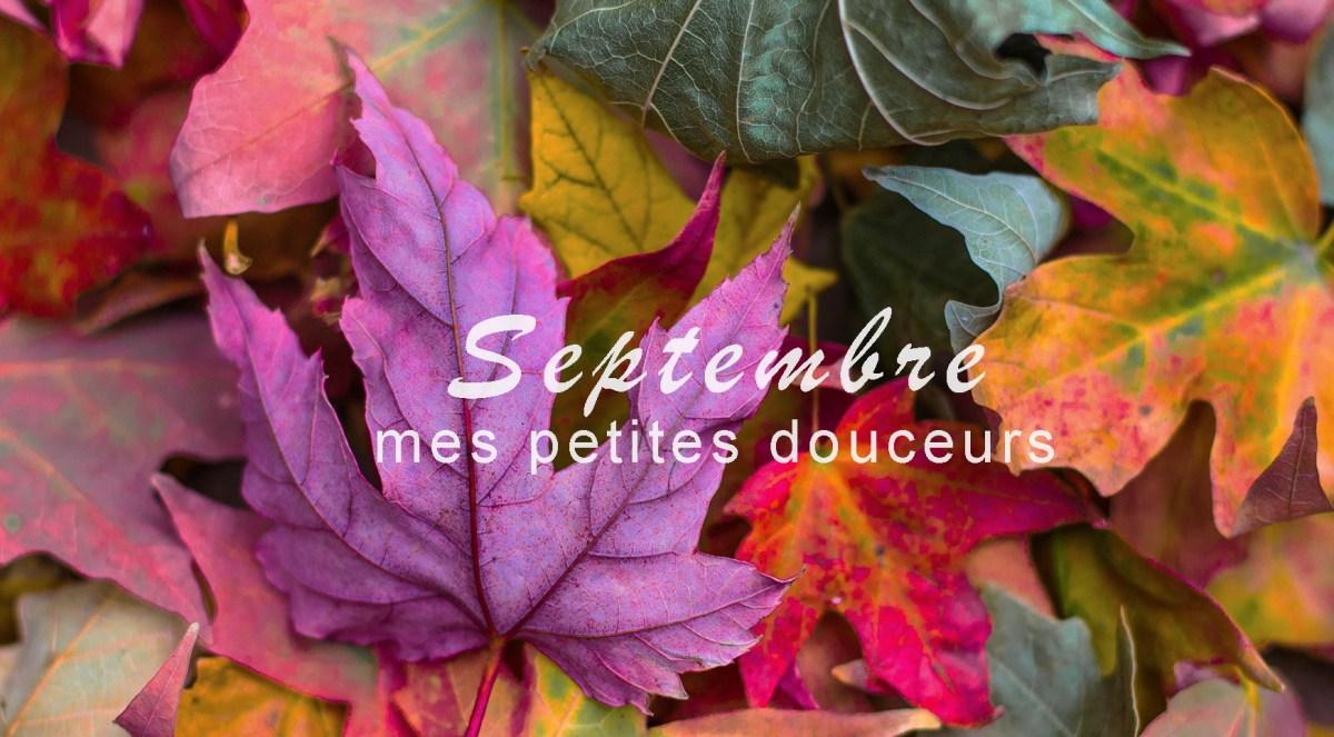 Douceurs de SEPTEMBRE : feuilles d'automne rouges, oranges, jaunes et vertes